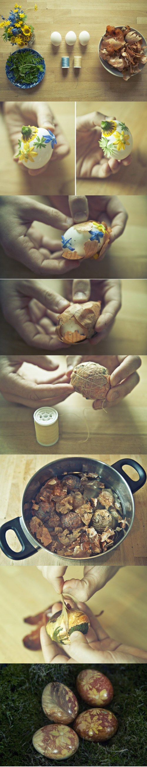 how-to-stain-a-egg